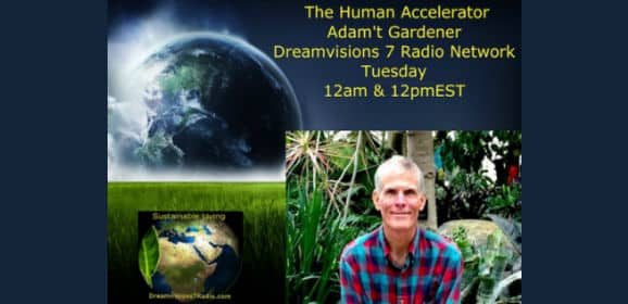 The Human Accelerator™