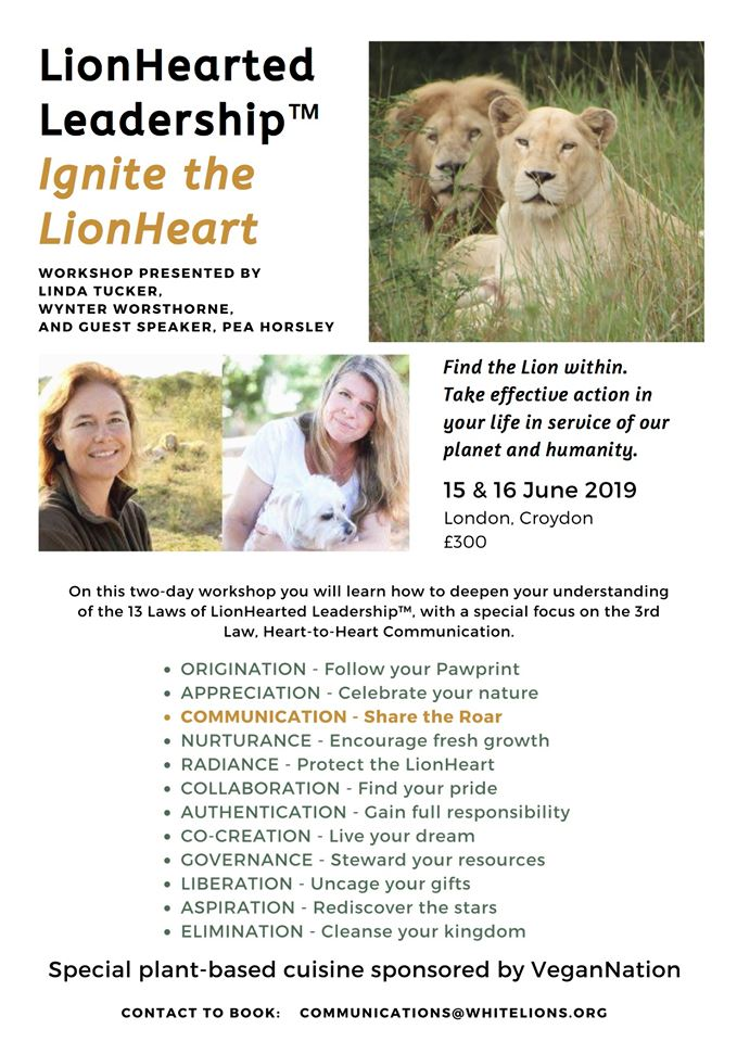 2-day Workshop: Ignite Your LionHeart ™ London