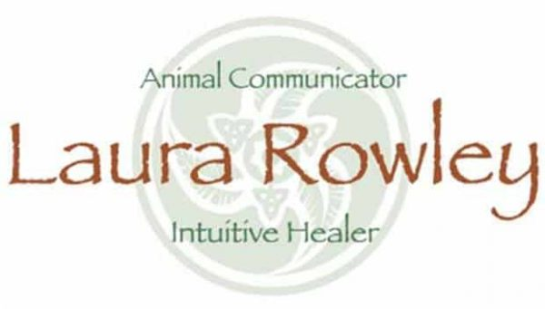 animal communication with Laura Rowley