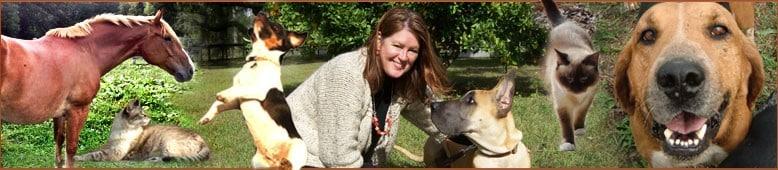 laura rowley international animal communicator and healer